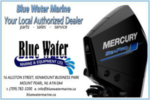 Blue Water Marine & Equipment Ltd
