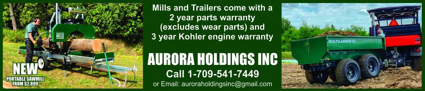 Aurora Holdings Inc