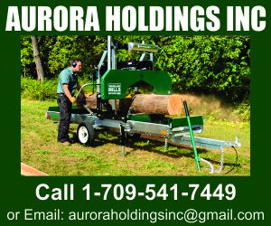 Aurora Holdings Inc