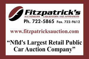 fitzpatricks auction