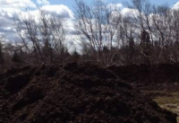 Composted Sheep Manure