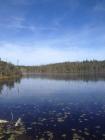 Land on pond (Salmonier Line , SCI)