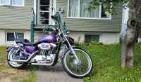 2002 Harley Davidson Sportster 1200 XL Custom - Photo 1 of 5