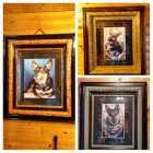 Antique Refurnished Frames