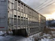 2003 EBY Livestock Trailer