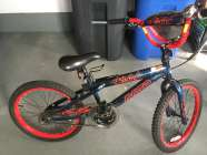 kids 20 inch bicycle.