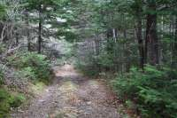 Land for Sale in North River
