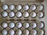 Lots of Golf Balls!!
