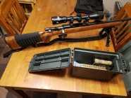 Remington Model 788 .308 for sale