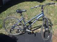 """Schwinn 17"""" Bike"""